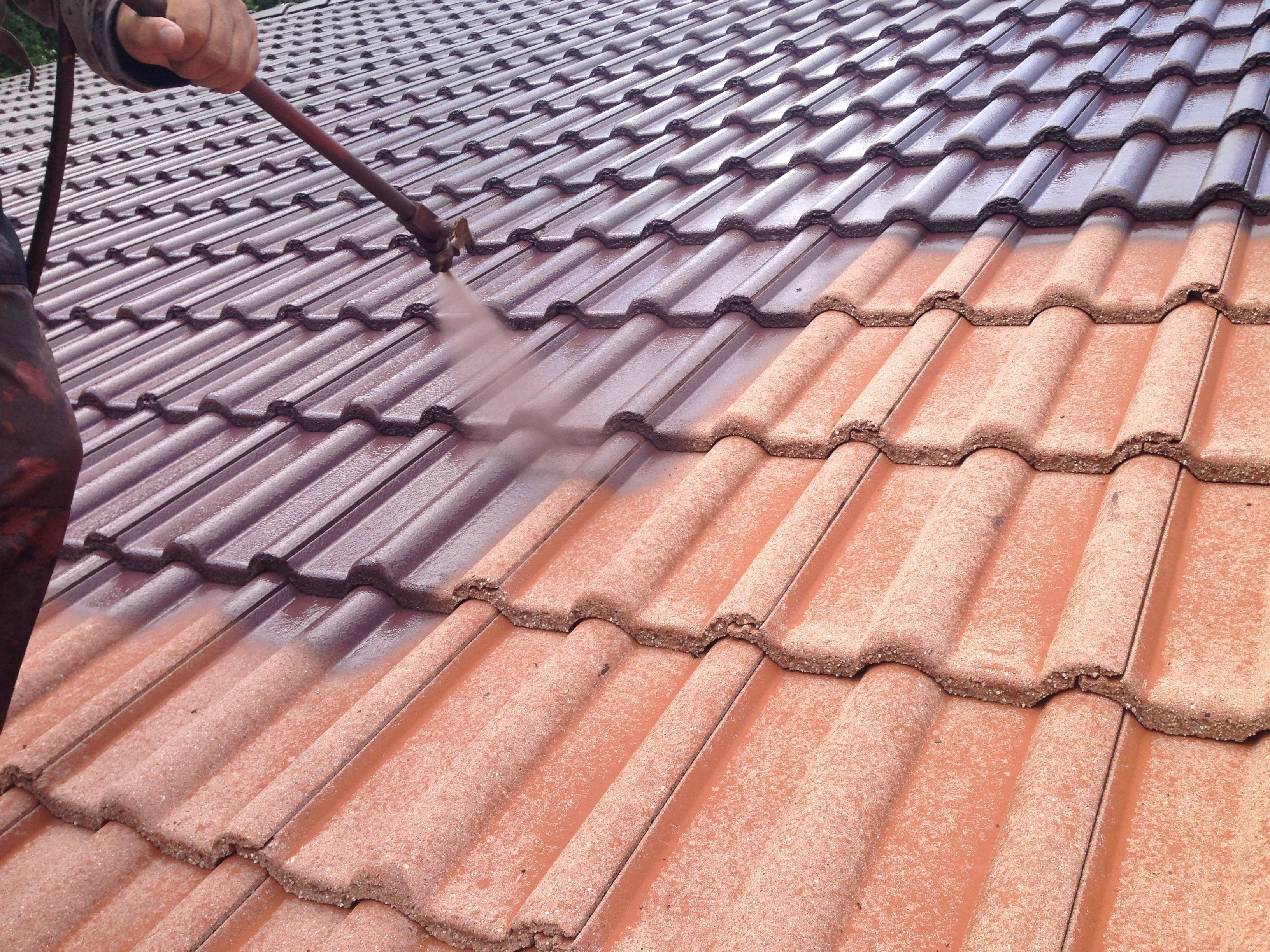 Extrem Dachreinigung mit Dachbeschichtung   SteinRein FY63