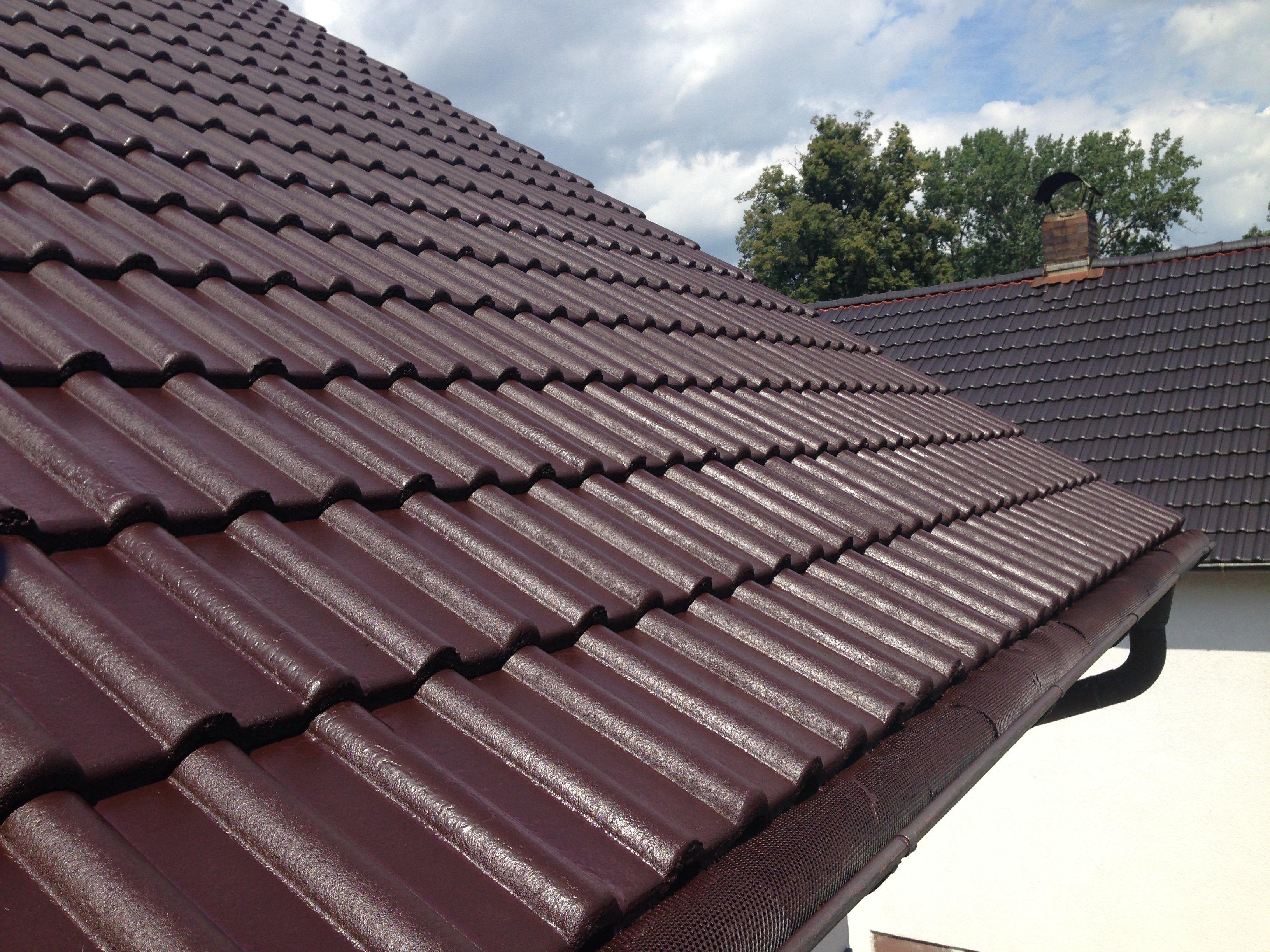 Relativ Dachreinigung mit Dachbeschichtung   SteinRein EI18