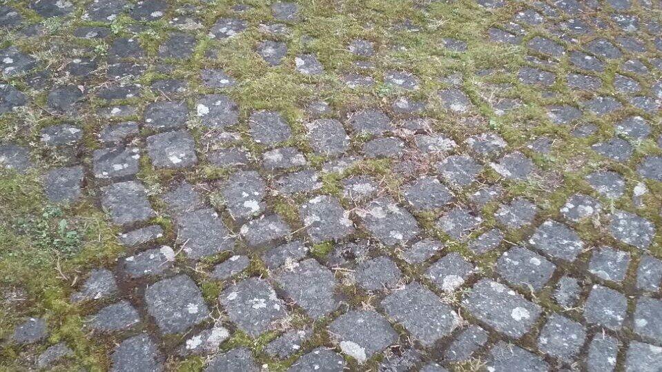 Pflaster in Augsburg vor der Reinigung von Saro