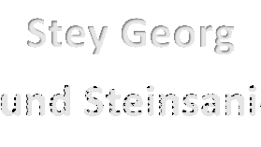 Stey Georg Dach und Steinsanierung Logo