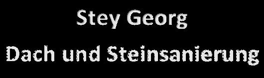 Reinigungsservice in Nürnberg 7 Stey Georg Dach und Steinsanierung Logo